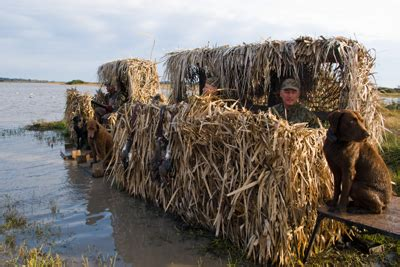 Hunting from Blinds and Stands — Texas Parks & Wildlife