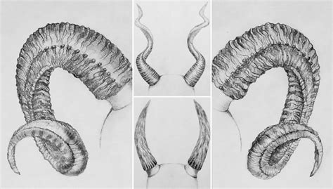 How to Draw Horns: Best Pencil Tutorial at WoWPencils