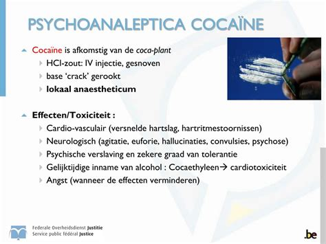 PPT - TOXICOLOGIE PowerPoint Presentation - ID:4253945