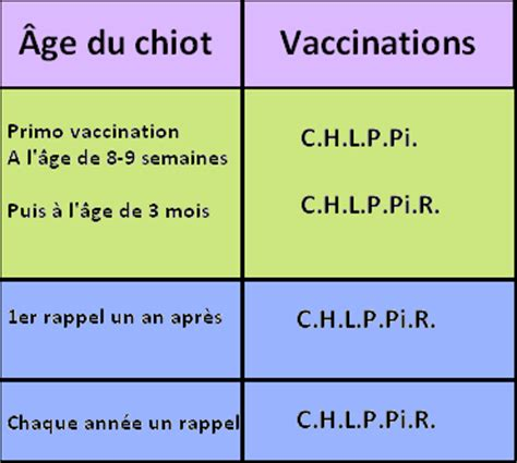 Vaccination du chaton/chat