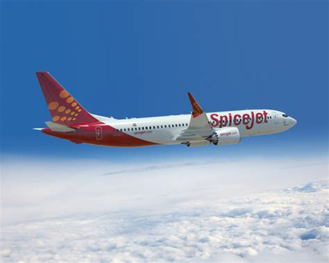 Spicejet orders 42 Boeing 737 MAX 8 aircraft - Airport