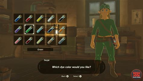 Zelda Breath of The Wild How to get Green Tunic - Armor