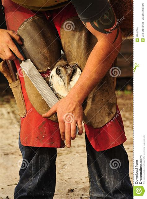 The Farrier, Rasping The Hoof Stock Photo - Image: 27941690