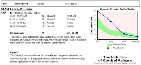 Someone help me understand my cortisol test at Adrenal